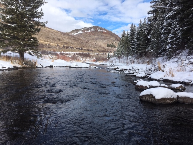 Yampa River Public - Stagecoach Tailwater